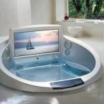эксклюзивный ТВ в корпусе акриловой ванны
