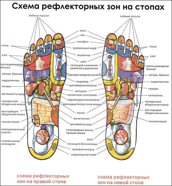Ноги - здоровье всего организма
