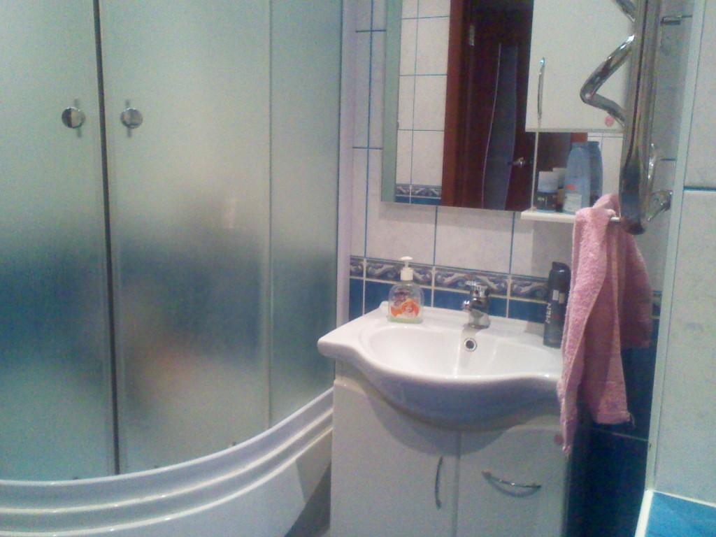 Малопрозрачные стеклянные шторки для ванной могут служить в роли перегородки совмещенного санузла