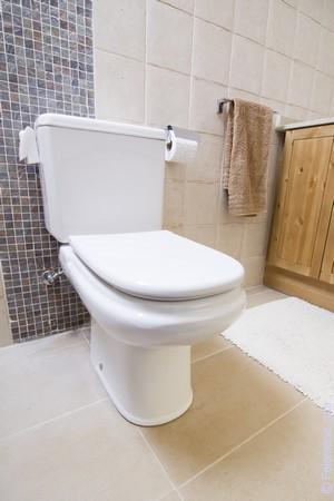 «Светлый кафель в отделке туалета способствует зрительному расширению пространства»