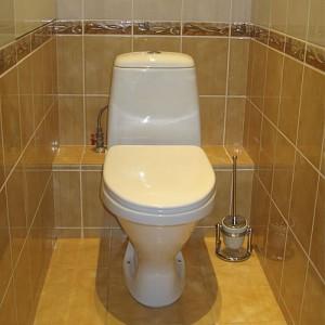 «Туалет с кафельной отделкой»