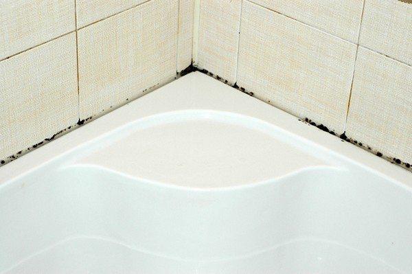 Плесень в местах соприкосновения ванны со стенами – опасное явление для вашего здоровья и источник неприятных запахов
