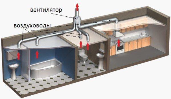 В системе отведение воздуха предусмотрено из участков с наиболее высокой влажностью